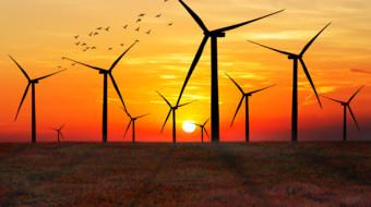 Guter Start ins neue Jahr: Knapp 75 % der Nettostromerzeugung mit Erneuerbaren!